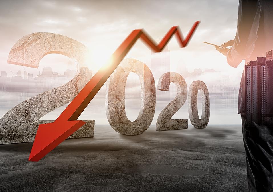 Economy in 2020
